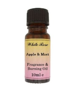 Apple & Mint (paraben Free)  Fragrance Oil