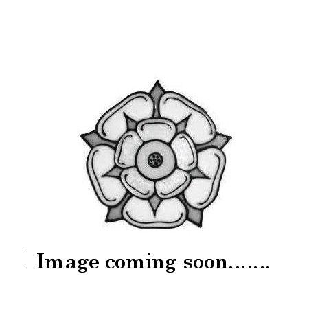 Eye of Oud Designer Type Fragrance Oil (Paraben)