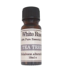 Tea Tree (Melaleuca alternfolia) 100% Pure Cosmetic Grade Essential Oil