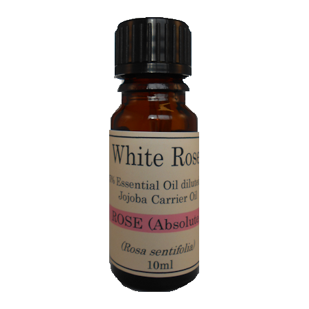 5% Diluted Rose Absolute (Rosa damascena) 5% Diluted Essential Oil